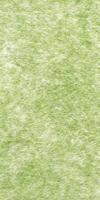Bewässerungsmatte Aquafil 120 grün Breite: 160cm&Wasseraufnahme 0,85 ltr/m²