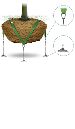 Baumabspannung - Wurzelballenverankerung 88 RBKW mit Spanngurt